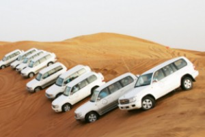 Liwa Safari Tour